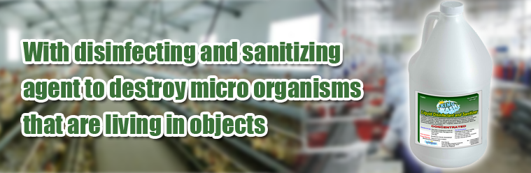 Kingwash Liquid Disinfectant Sanitizer Banner